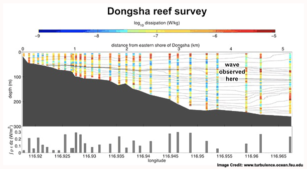 dongsha_reef_survey-SM copy
