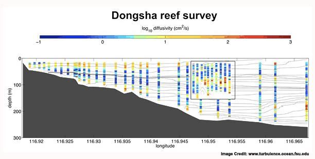 dongsha_reef_survey_2-SM copy